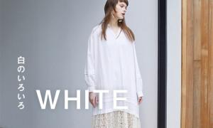 WEB NEWS WHITE